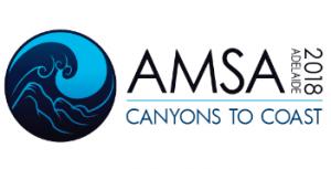 2018 AMSA conference