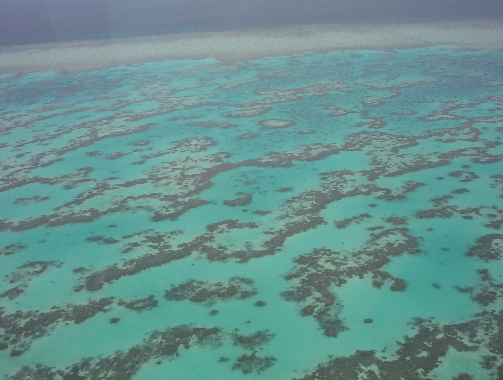 aerial picture of the great barrier reef